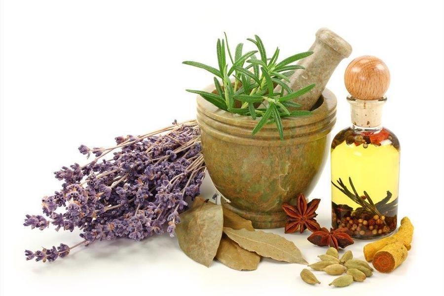 Curso de herbología